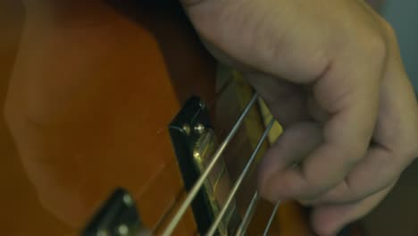 Bass-Guitar-Pickups-and-Strings-Closeup