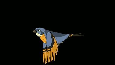 Flying-Bluebird-Animation-with-Alpha