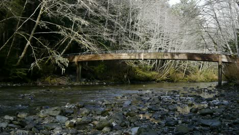 Bridge-and-Creek-