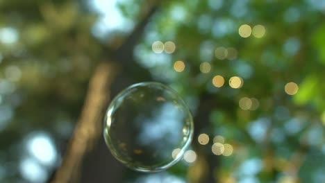 Floating-Soap-Bubble