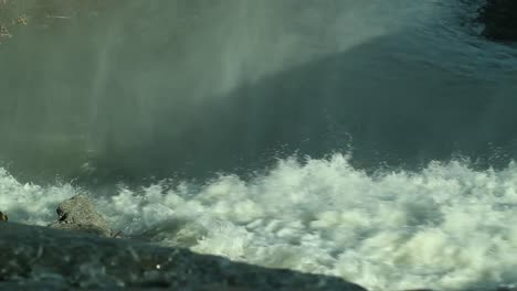 Rapids-Close-Up