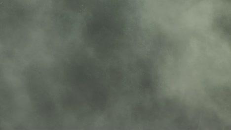 Dense-Fog-Covered-Forest-3