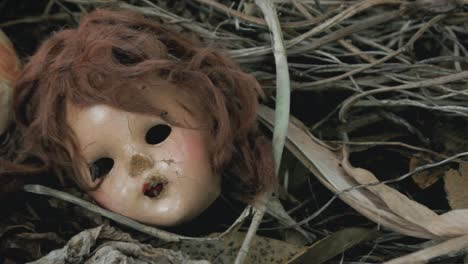 Decomposing-Doll