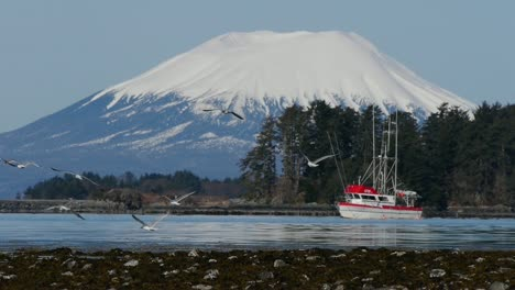 Fishing-Boat-Scaring-Gulls