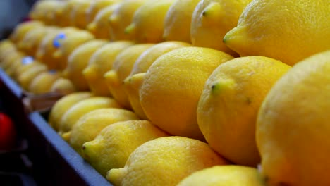 Food-Market---Fresh-Lemons