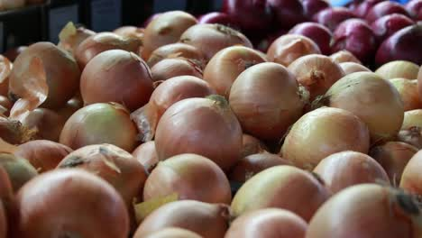 Food-Market---Onions