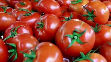 Food-Market---Tomatoes-2