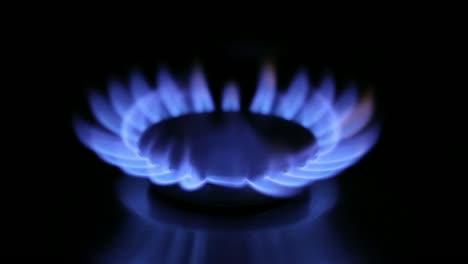 Gas-Hob-1