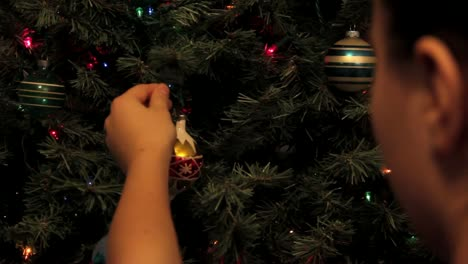 Ornament-on-Tree