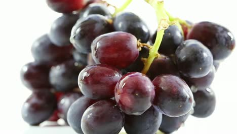 Fresh-Grapes-Close-Up