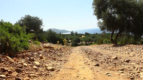 Dirt-Track-in-Turkey
