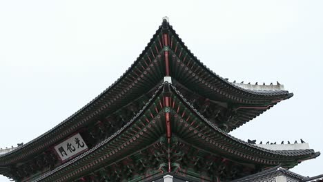 Part-of-a-Roof-at-Gyeongbok-Palace-Seoul