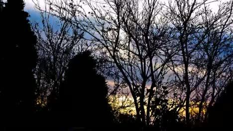 Spooky-Sunrise