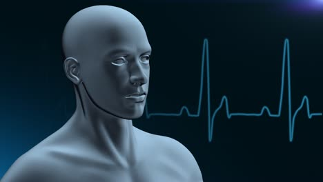 Human-Medical-Background---Loopable