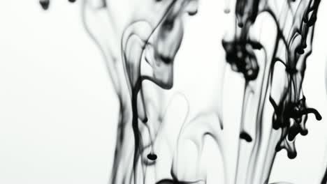 Ink-Flow-01