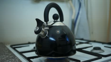 Kettle-on-Gasstove