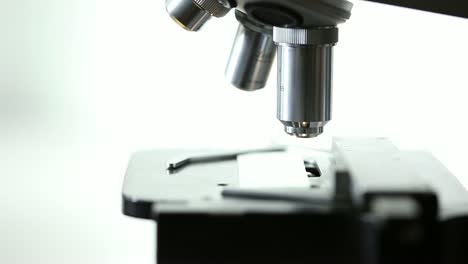 Scientist-Using-Microscope