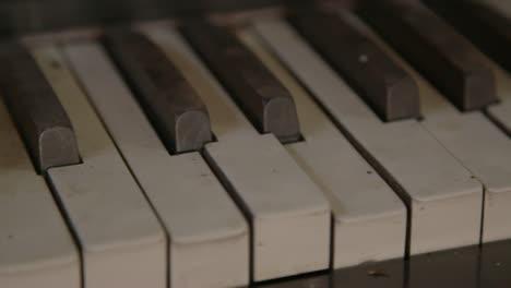 Organ-Keys