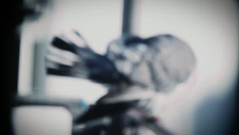 Pigeon-Closeup