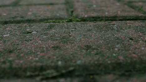 Rain-Drops-Hitting-a-Stone-Brick-Floor