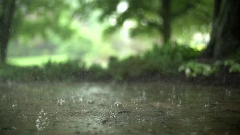 Raindrops-in-Super-Slow-Motion