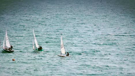 Sailing-Dingy-s-In-the-Sea