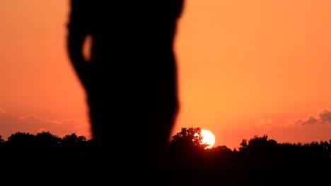 Taking-a-Walk-at-Sunset