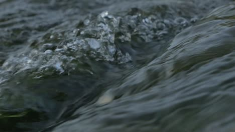 River-Water-Close-Up