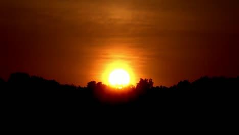 Sunrise-TImelapse-Over-Trees