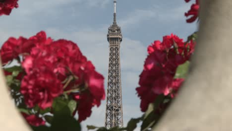 Eiffel-Tower-and-Red-Flowers