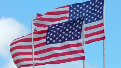 USA-Flags-in-a-Strong-Wind