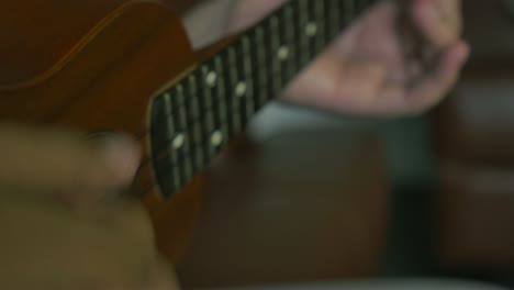 Musician-Plays-Ukulele