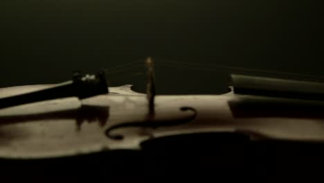 Violin-Side-Profile