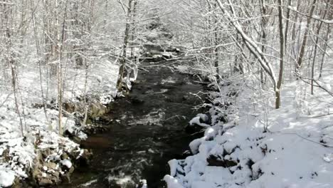 Winter-Stream-CC-BY-NatureClip