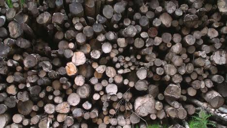 Woodpile-Front-Shot