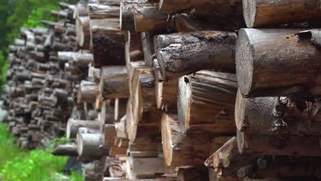 Woodpile-Pull-Focus