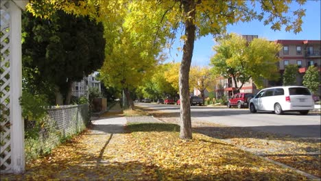 Street-in-the-Autumn