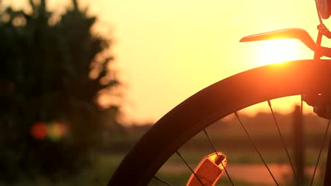 Silhouette-Bike-Sunset