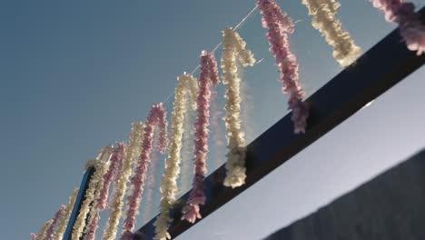 Hanging-Garlands