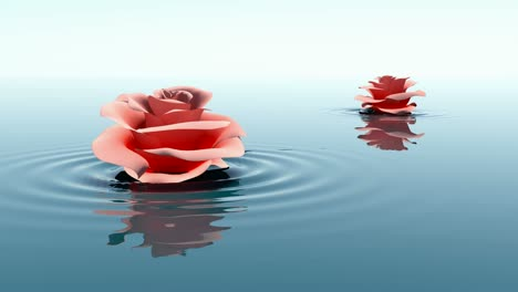 Rose-In-Water-Rippling