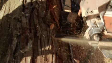Bandsaw-Cuts-Log