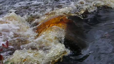 Rushing-Red-Waters-