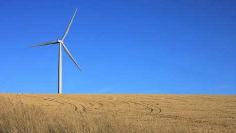 Wind-Turbine-in-Field