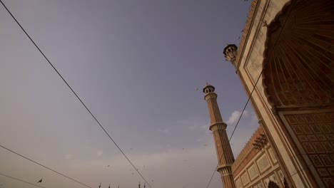 Birds-Flying-Over-a-Mosque-in-India