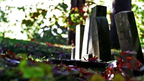 Cemetery-Stock-Video-