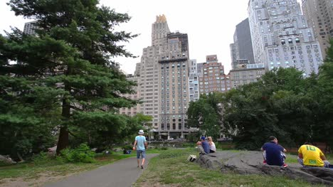 Walking-in-Central-Park-NY