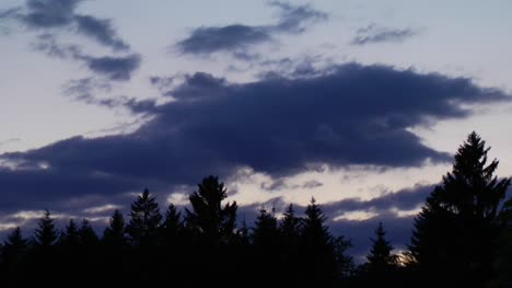 Sky-Night-TImelapse-Clouds-and-Trees