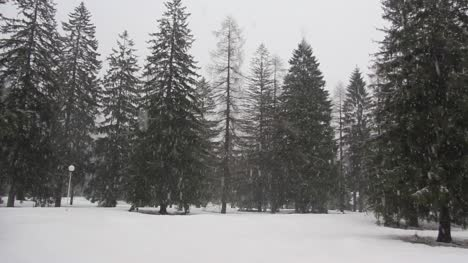 Snowing-in-Slovenia
