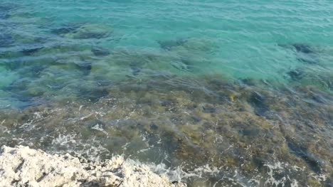 Turquoise-Shoreline-and-Reef