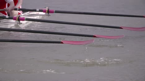 Rowing-Team-Oars-Close-Up-1